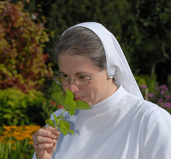 Sr. Magdalena im Kräutergarten